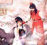 karya_sastra_dinasti_ming_dan_qing_aldisurjana